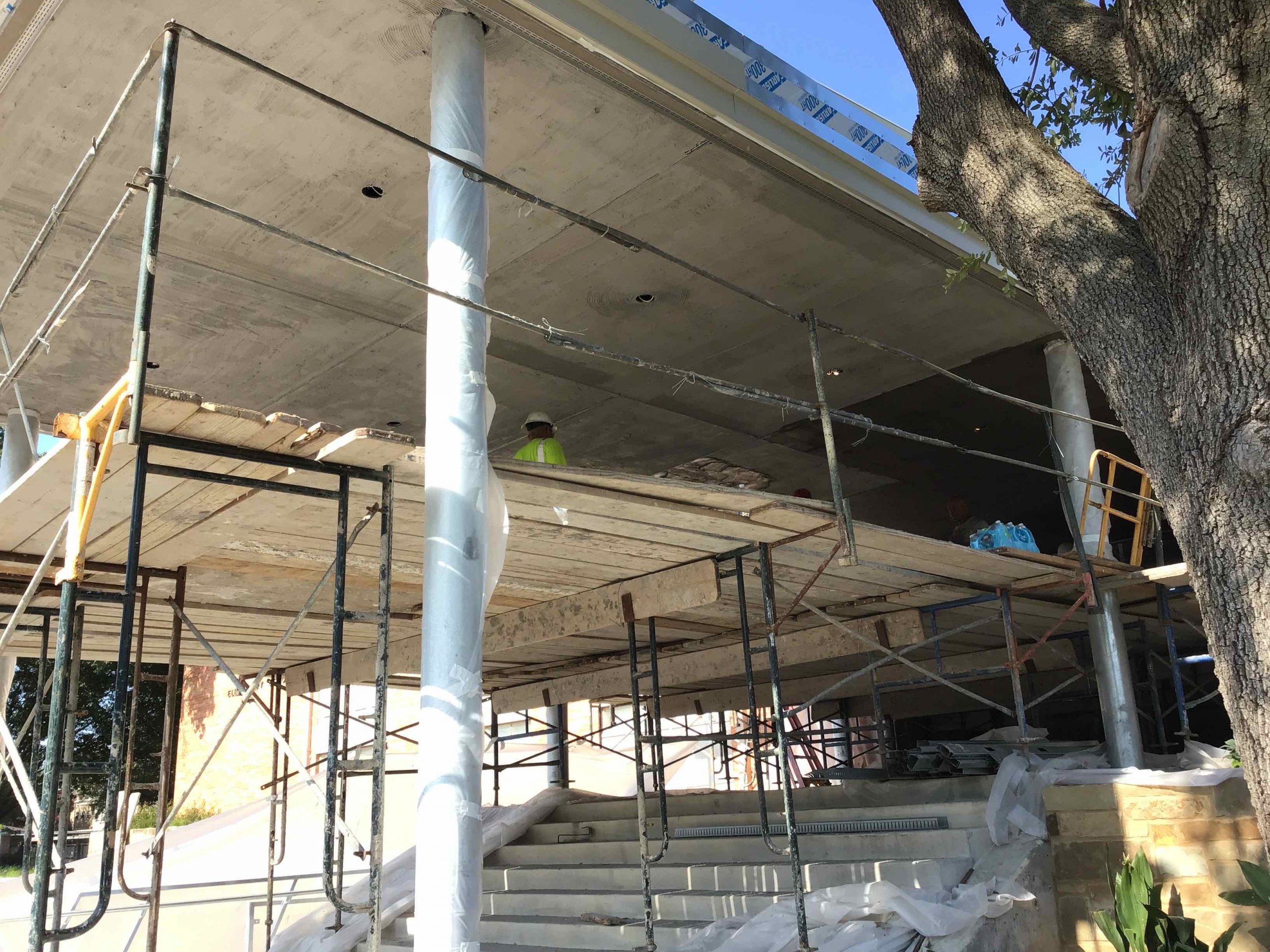 Canopy Coming Along image 1